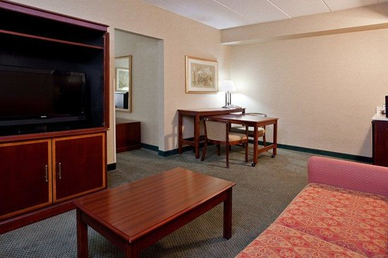 Holiday Inn Express Gahanna / Columbus Airport E: Large Suite  King Bed with Sofa Bed Guest Room
