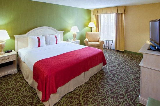 Holiday Inn Chantilly - Dulles Expo: King Bed Guest Room