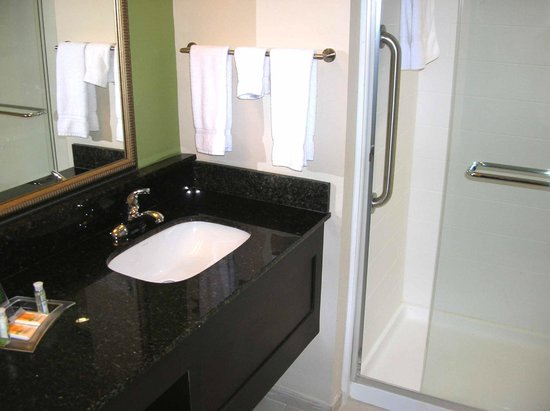 Holiday Inn & Suites Atlanta Airport - North: Suite bathroom