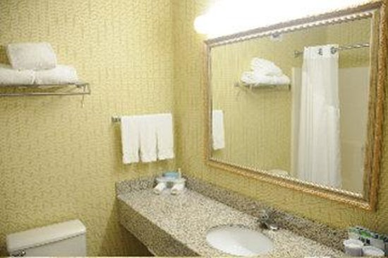 Holiday Inn Express Winchester South: Guest room bath with granite vanity