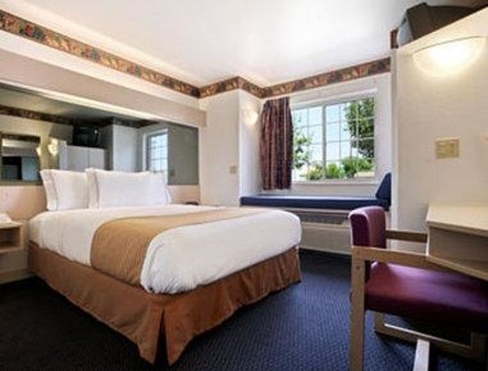 Microtel Inn &amp; Suites by Wyndham Appleton: Standard Queen Bed Room