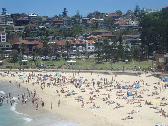 Nice Beach  Picture Of Sydney Private Guided Tours Sydney  TripAdvisor
