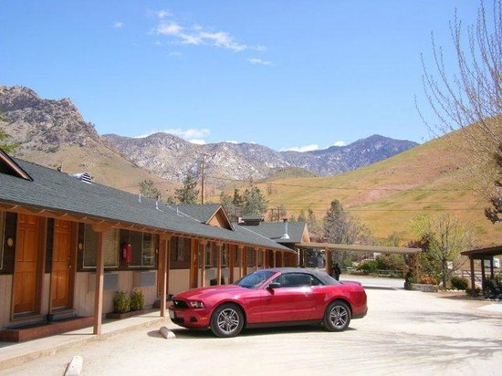 Sequoia Lodge:                   Beautiful surroundings parked outside our room