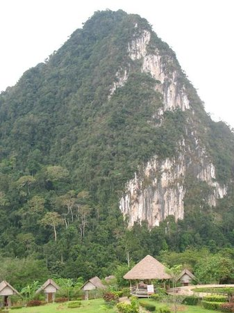 The Cliff & River Jungle Resort:                   The view