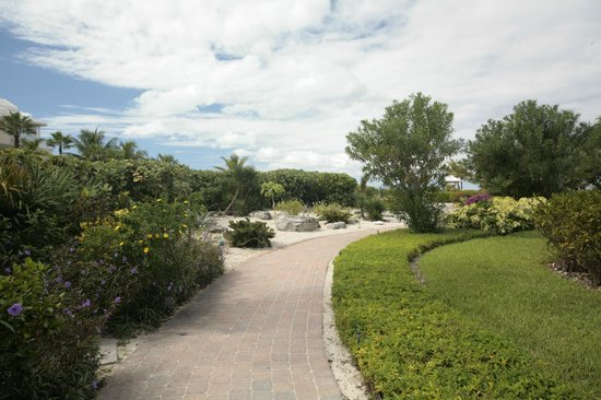 Royal West Indies Resort:                   Path to beach.