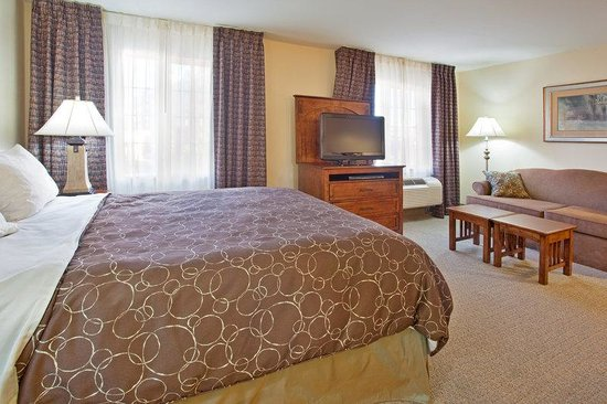 Staybridge Suites Albuquerque - Airport: Queen Bed Guest Room