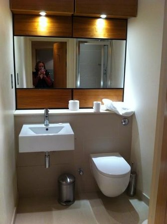 Avni Luxury Serviced Apartments :                   bathroom