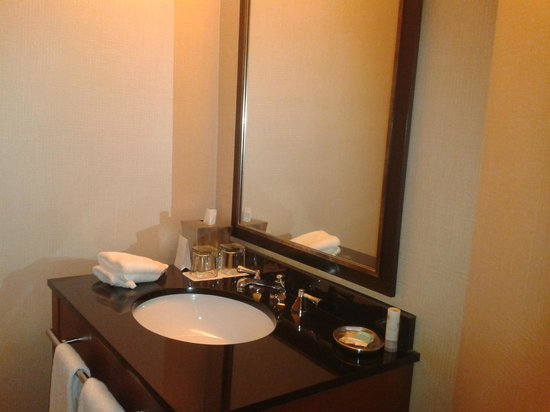 Hyatt Regency Crystal City:                   Bathroom of suite...no counter space though bathroom is large.