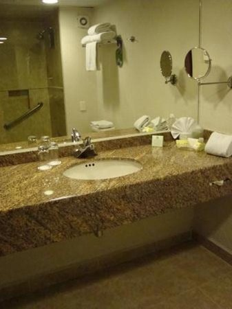 Holiday Inn Mexico City Tlalpan Churubusco: Guest Bathroom