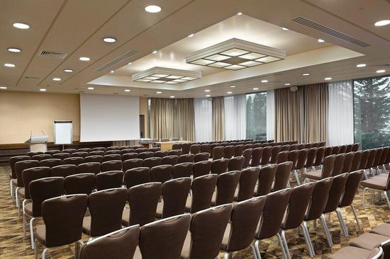 Holiday Inn Athens Attica Avenue Airport West: Conference Room