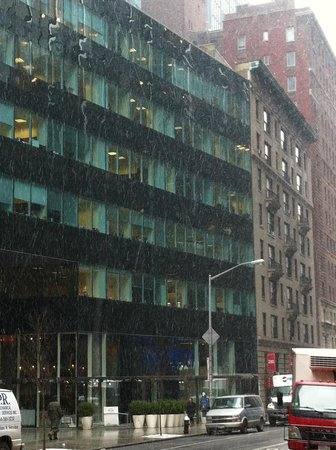 The Blakely New York : snow 