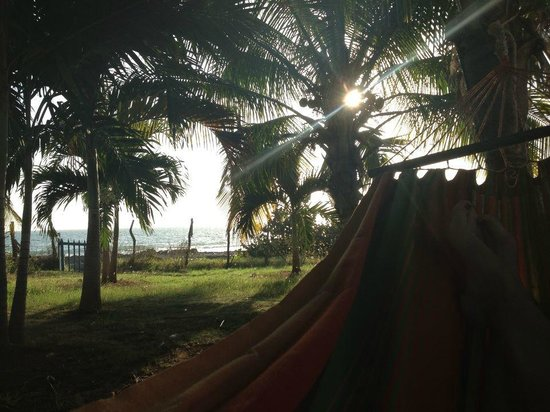 Marblue Villa Suites: Hammock View