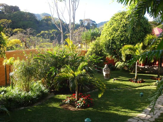Boquete Garden Inn:                   View from back of property