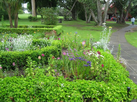 Paihia, New Zealand: Gardens