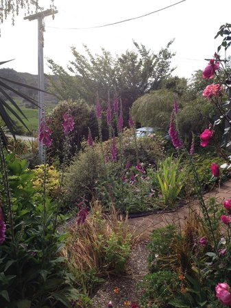 Waitomo Caves Guest Lodge: The garden