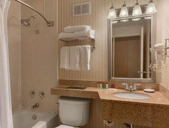 Ramada Plaza Hartford Hotel: Bathroom