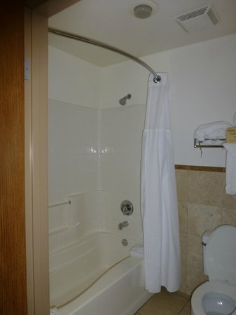 Ayres Hotel Anaheim:                   Shower over Bath