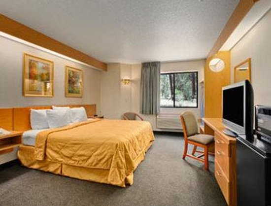 Super 8 Show Low: Standard One King Bed Room