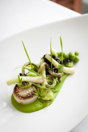 Cass House Inn and Restaurant: Daikon & Fiddlehead Ferns