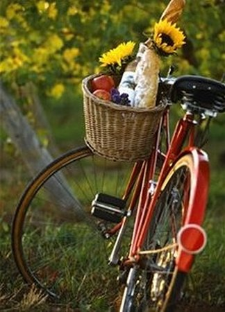 Grapemobile Bicycle Hire & Tours