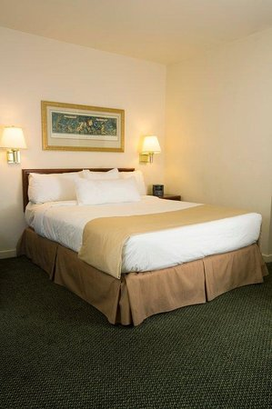 Sonesta ES Suites Malvern: Queen Bed