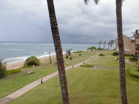 Courtyard by Marriott Kauai at Coconut Beach:                   back side of property