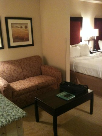 Comfort Suites DFW N/Grapevine:                                                                         sofa area
