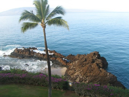 Sheraton Maui Resort & Spa:                   A room with a great view