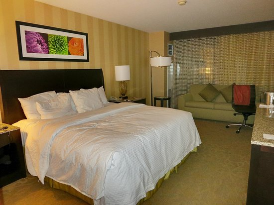 DoubleTree by Hilton Hotel Santa Ana - Orange County Airport:                   King size room with sleeper sofa