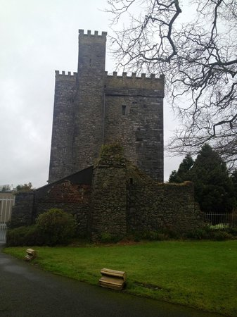 Barberstown Castle:                   The castle