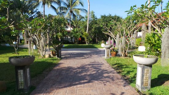 CocoPalm Beach Resort: jardin