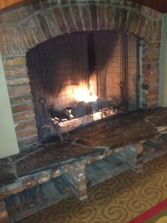 Prescott Hotel - a Kimpton Hotel:                   fireplace in the living room downstairs