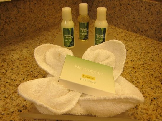 Homewood Suites Dover-Rockaway: Amenities