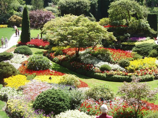 Love The Contrast In This Patch Of Flowers Picture Of Butchart Gardens Central Saanich
