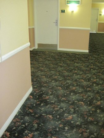 Miracle Springs Hotel and Spa:                                     Dated and dirty halls