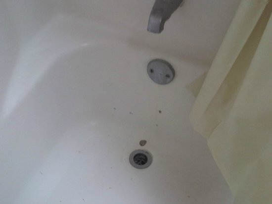 Best Miami Hotel: Chipped tub w/drain MISSING!