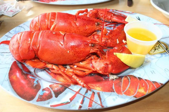 Harpswell, ME:                   Lobster lunch at Morse's