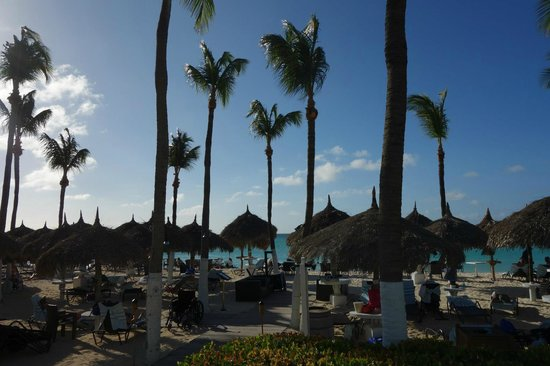 The Westin Resort & Casino, Aruba: Westin Beach