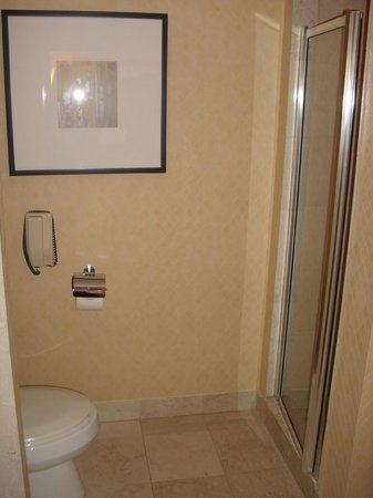 InterContinental Toronto Yorkville:                   Stand alone shower