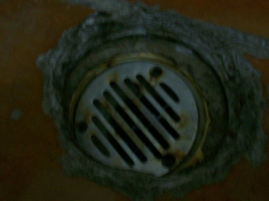 Cabo Inn Hotel:                                     Filthy shower drain