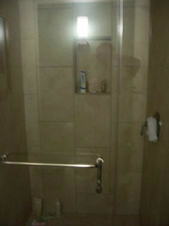 Royal Lahaina Resort:                                     shower door