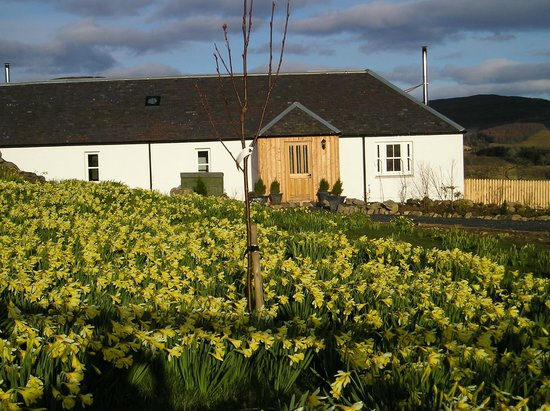 Dalnoid Holiday Cottages