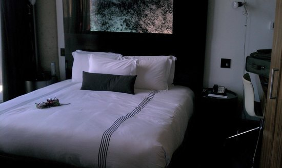 Thompson LES - A Thompson Hotel:                   Comfy