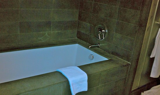 Thompson LES - A Thompson Hotel:                   Stone tub!