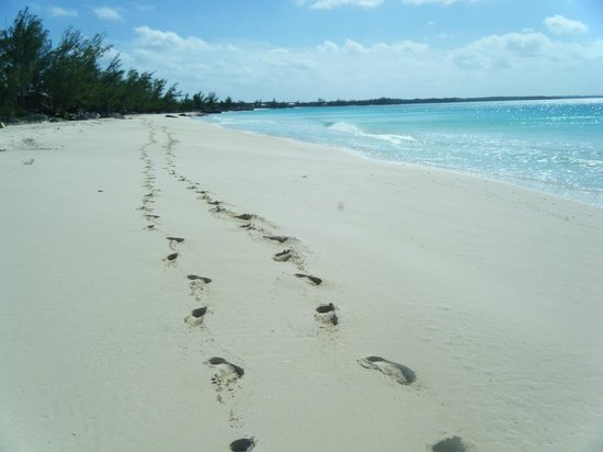 Pigeon Cay Beach Club:                   Footprints--Just ours