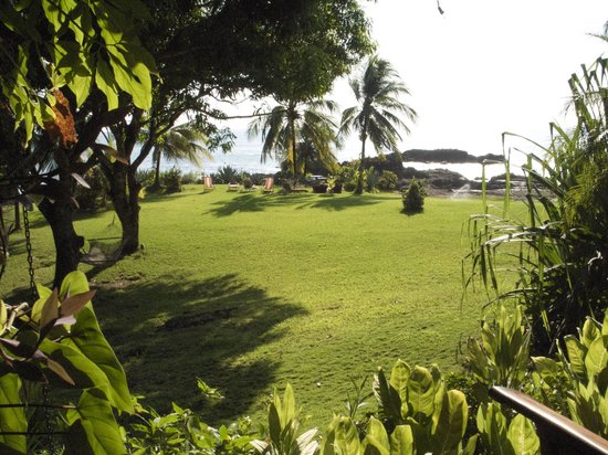 Hotel Amor de Mar:                   Lawn and ocean view from the main porch of the hotel
