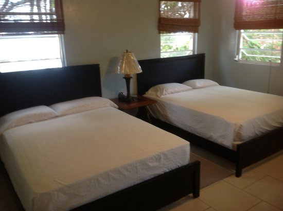 Beef Island Guest House: New Guest Rooms