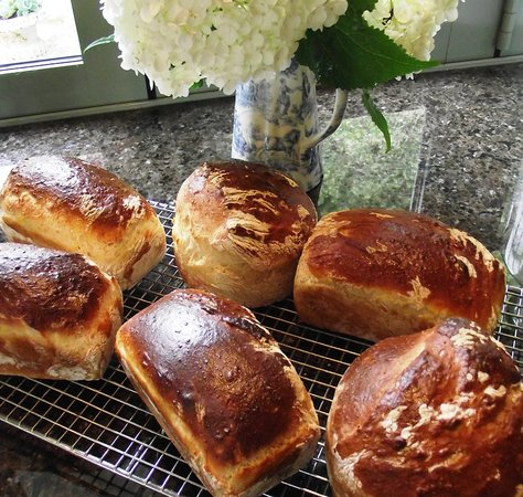 Otorohanga, New Zealand: Fresh baked bread for breakfast