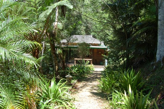 Amazing Wollumbin Palms Retreat at Mt Warning:                   Water Lodge