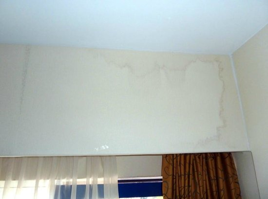 BEST WESTERN Blue Tower Hotel:                   stains, leaking wall above the window